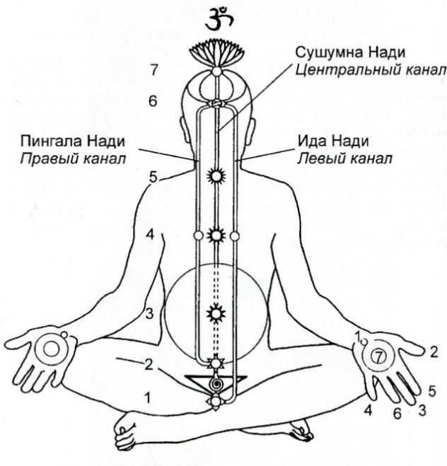 Энергетические каналы человека схема